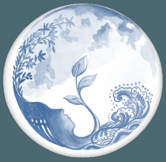 Aux sources de Gaia
